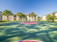 Full-Sized Outdoor Basketball Court