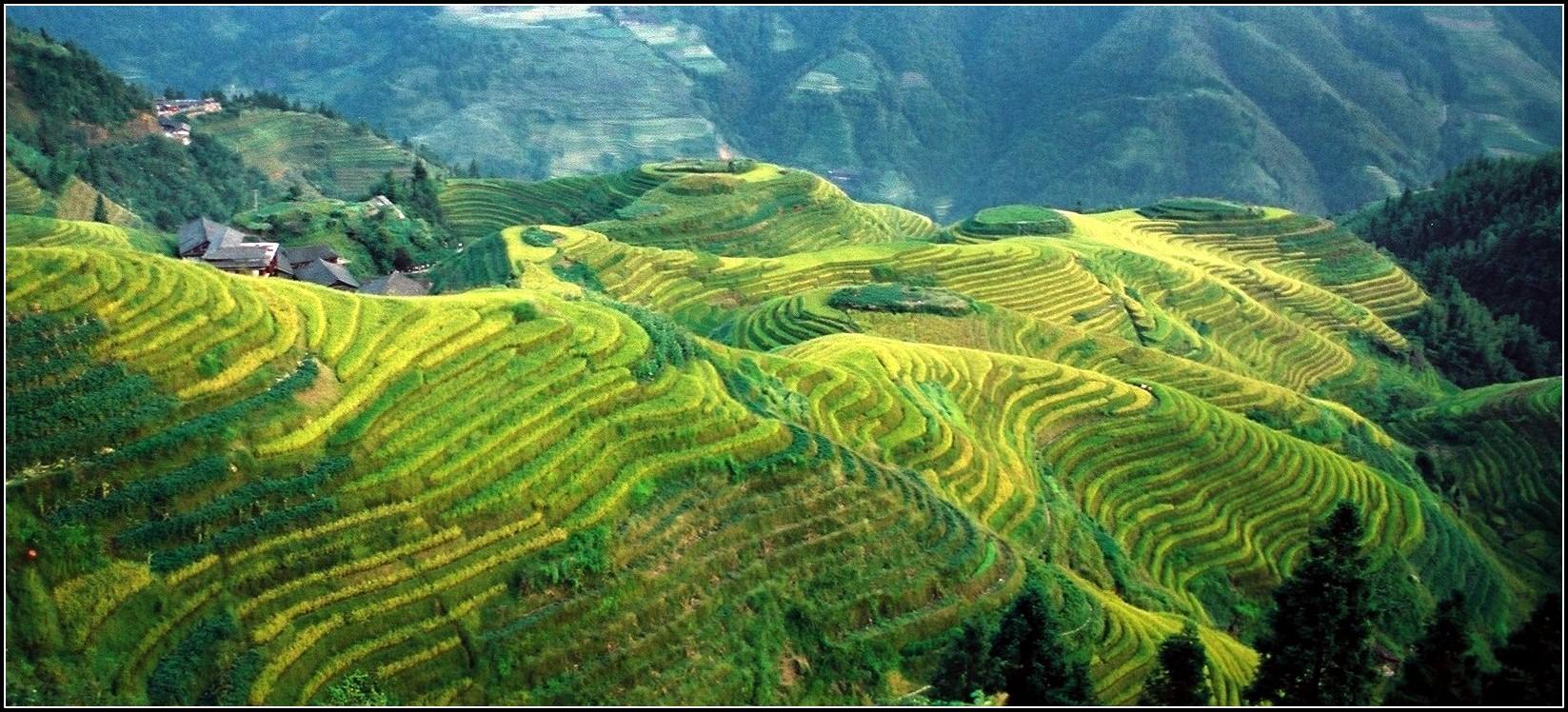 en Terres chinoises...