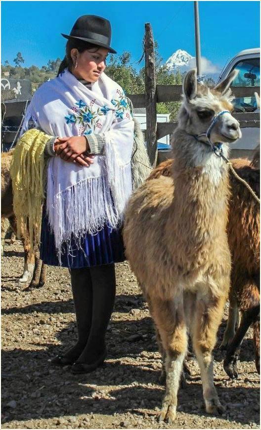 Au marché en Terre Quechua