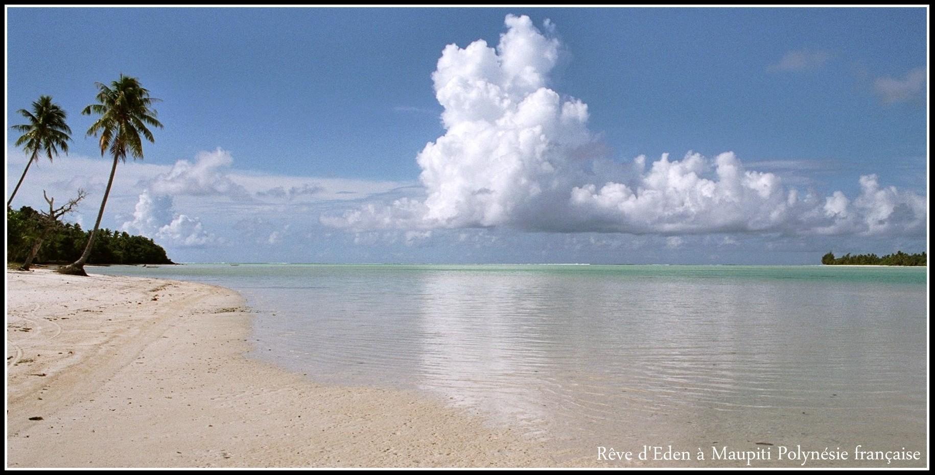 en Terres polynésiennes...
