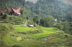 Trekking en Pays Toraja Sulawesi Indonésie
