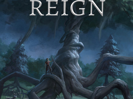 Essence of Ohr: The Warden's Reign Cover Reveal!