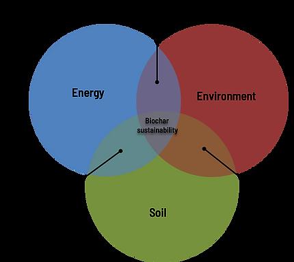 Biochar sustainability.png