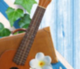 sc_ukulele_top.png