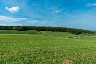 Champs vallonnés - Région de Rimouski