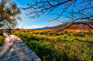 Réserve nationale de faune du Cap‑Tourmente