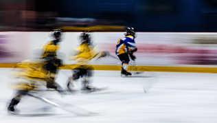Flou artistique hockey