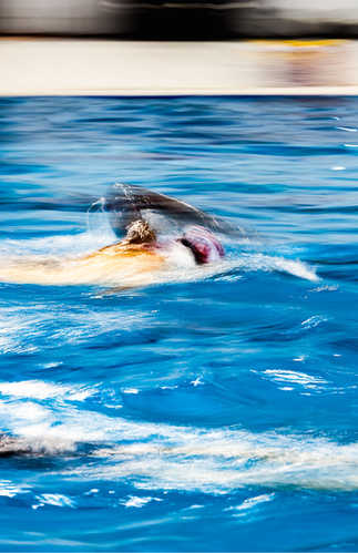 Flou artistique natation