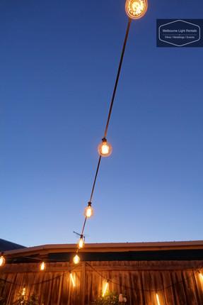 Large Vintage Festoon lights