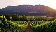 Cape_Winelands.jpg