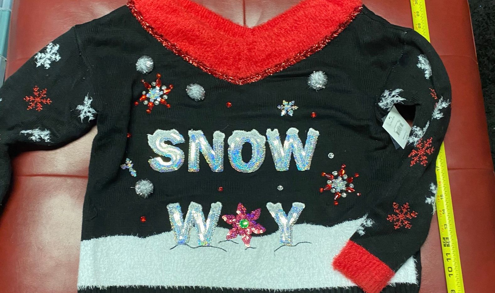 snow 1.JPEG