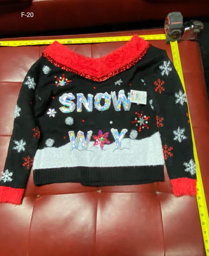 snow 2.JPEG