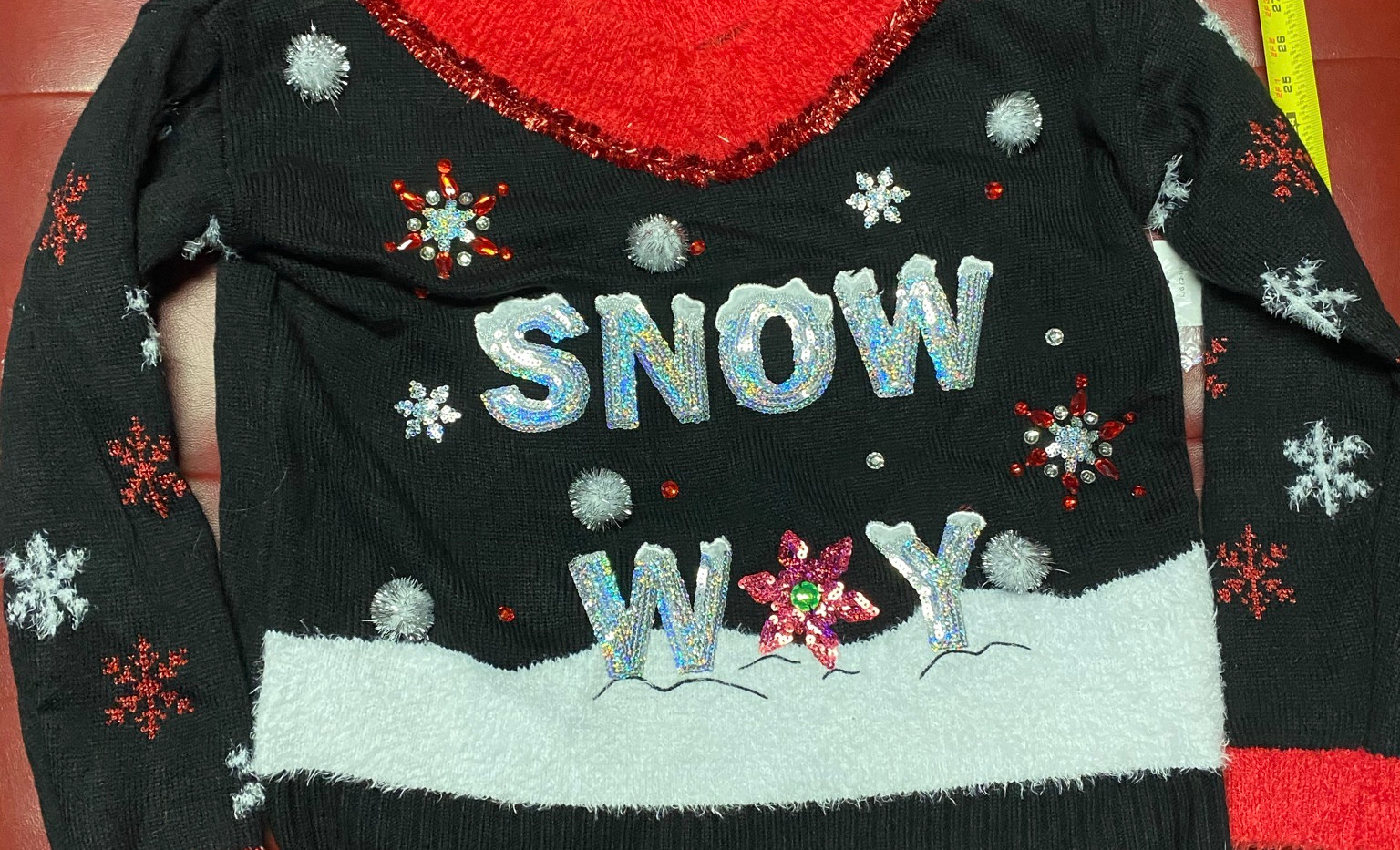 snow 3.JPEG