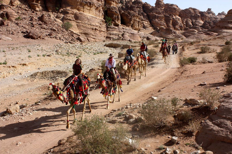 Activities- Camel Caravans
