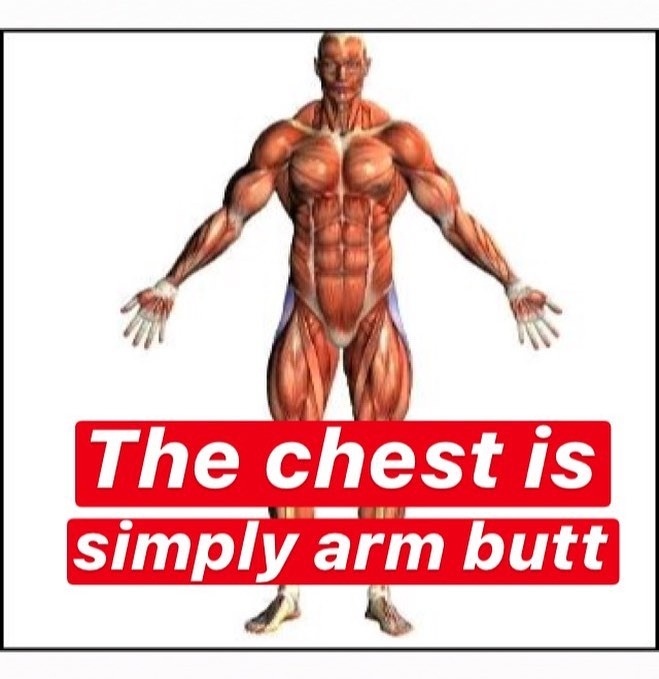 chest is simply arms butt