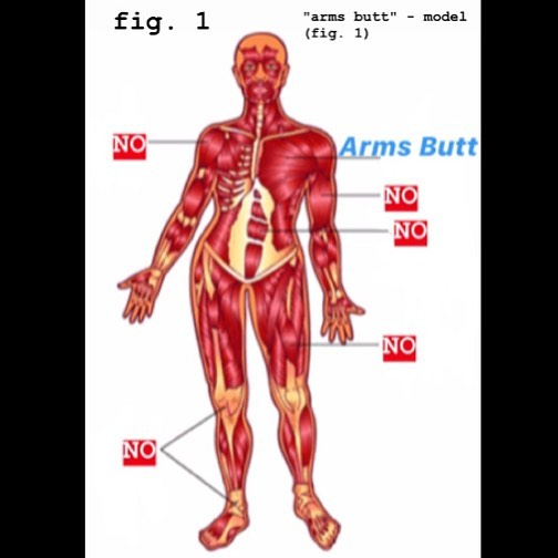 arms butt fig 1
