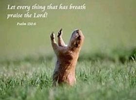 Praise Ye The Lord.jpg