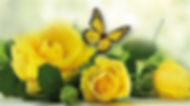 butterflies and roses3.jpg