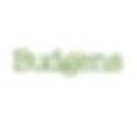 budgens_sq.png
