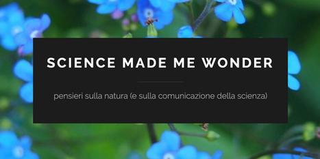 My Blog: Science made me wonder
