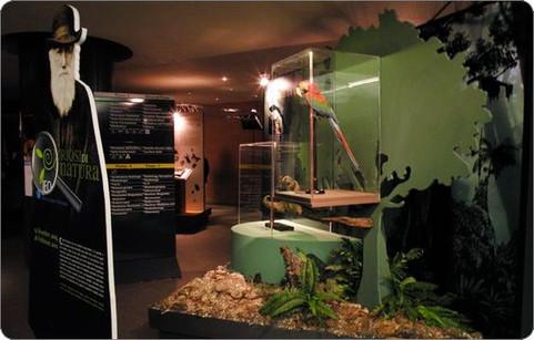 Darwin Exhibition, IEO Milano