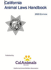 2020 HANDBOOK COVER