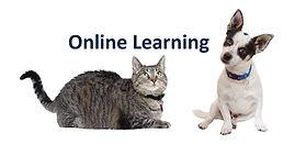 Online Learning Header Image.jpg