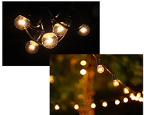 HIRE 39 - 20 mtr Festoon Lights