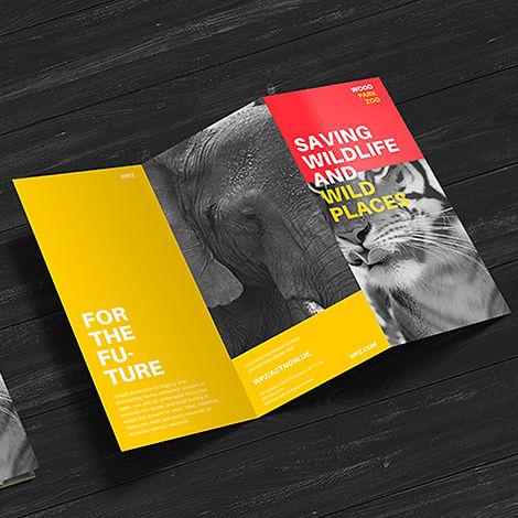 imprenta folletos tripticos dipticos artes graficas