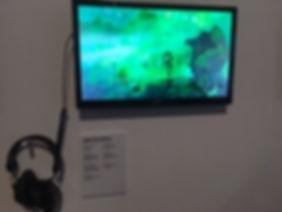 york gallery - strange pill - the nyco p