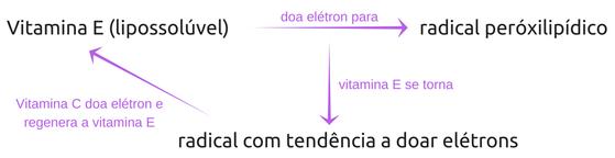 Vitamina C (hidrossolúvel) (1)