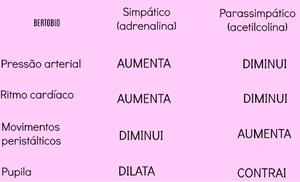 Sistema nervoso simpático e parassimpático.png