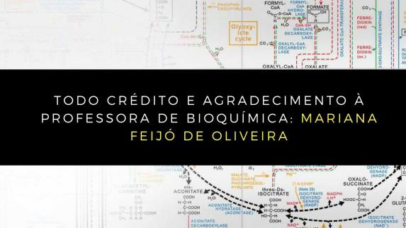 bioquímica (8)