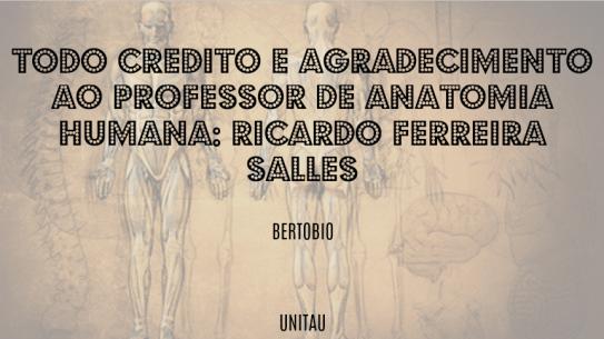 Agradecimento Ricardo - ANATO.jpg