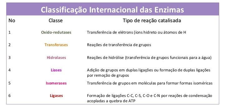aula4enzimas201102-61-728