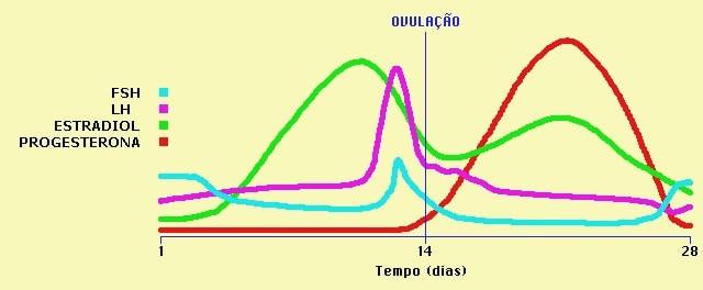 Resultado de imagem para grafico hormonios menstruação