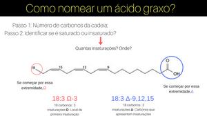 Como nomear um ácido graxo_