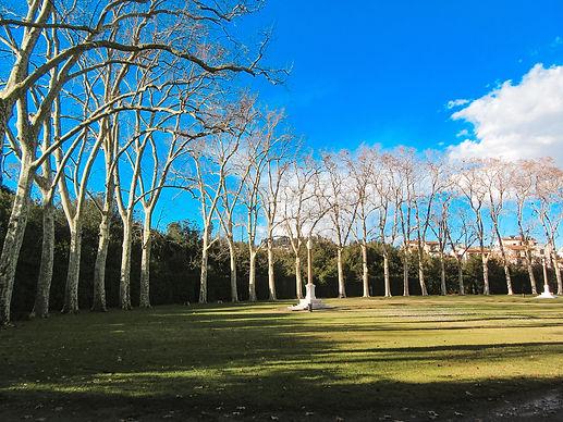 Giardino di Boboli.jpg