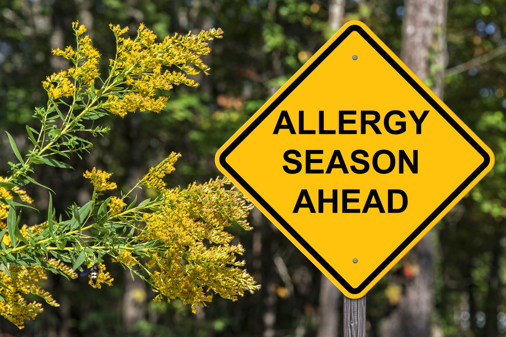 allergy season in amarillo