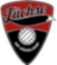 Volleyfuechse_Logo_FINAL_200x230_72dpi.p