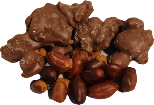 Chocolate-Dipped Roasted Peanuts    (One Pound)