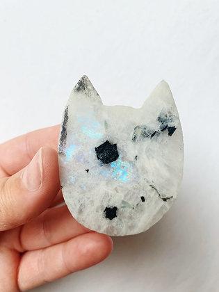Moonstone Cat