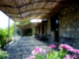 camere vicino Orvieto;Orvieto bed and breakfast;dove dormire in Umbria