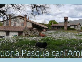 Agriturismo in Umbria Le Casette