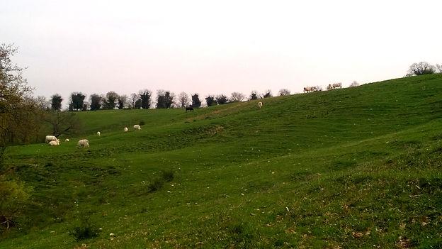 vacanze in Umbria;vacanze nel verde;relax e natura;Orvieo;Todi;