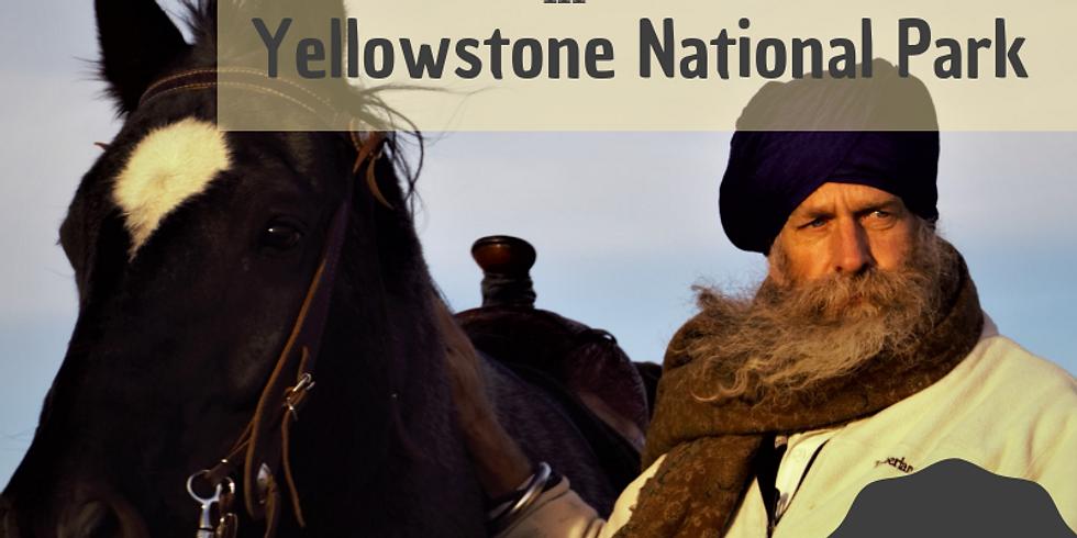 Horseback Yellowstone - Naad Yoga Experience