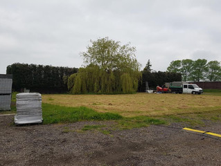 Reducing 97 Conifers at GT Trax in Earith, Cambridgeshire