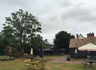 Sycamore Tree reduction at The Horseshoe restaurant in Offord, Cambridgeshire
