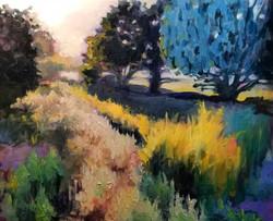 Twilight Grass