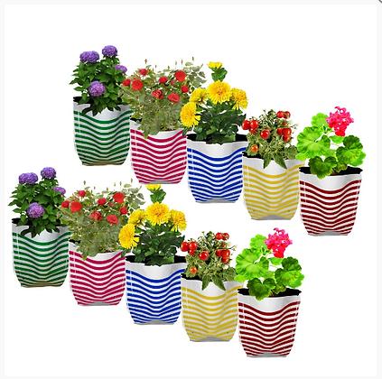 Premium Colorful Stripe Grow Bag - Set of 10